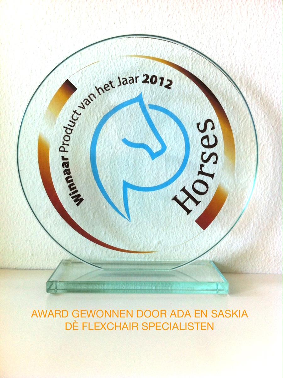 Flexchair Ruitertraining   Winnaar Horse product 2012